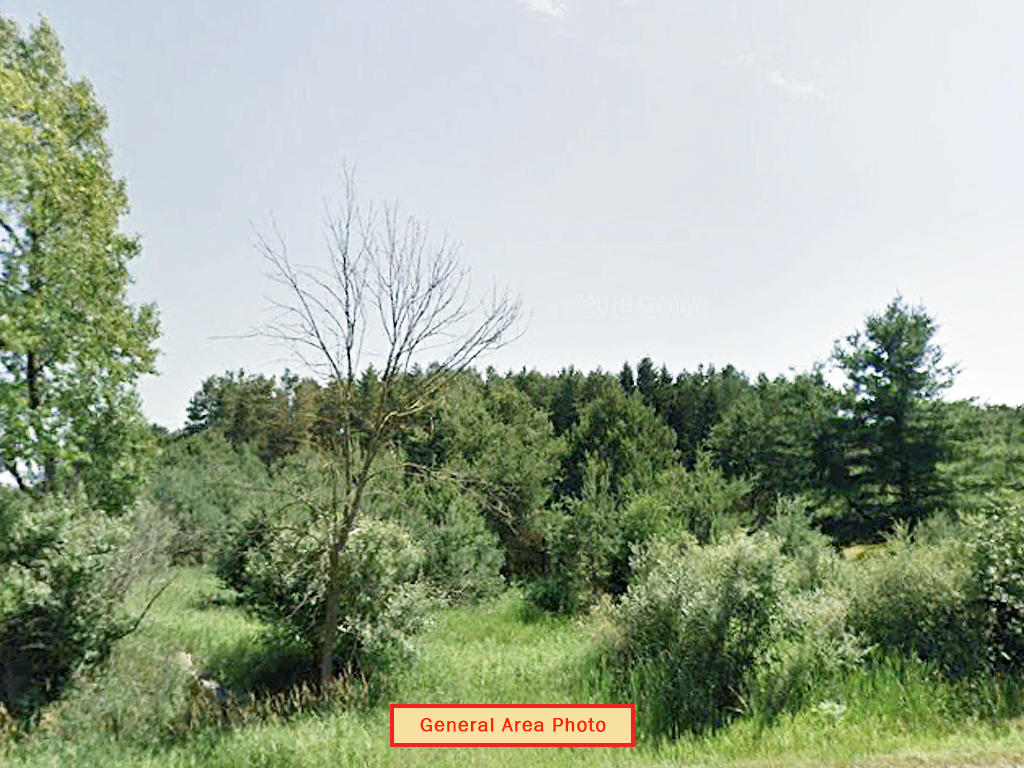 Beautiful Michigan Land Investment Near Townline Lake - Image 1