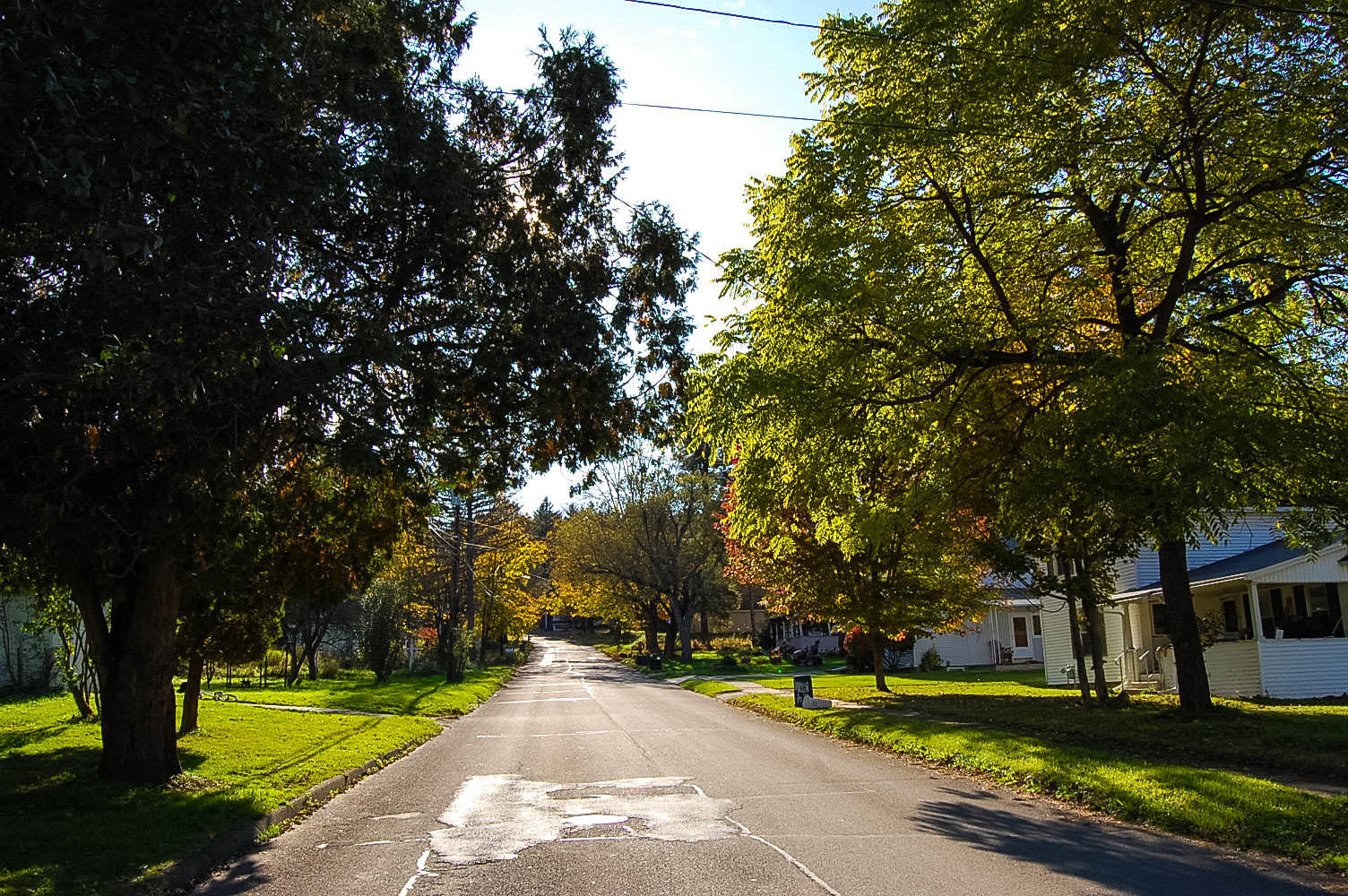 Discover the Beauty of Rural New York - Image 6