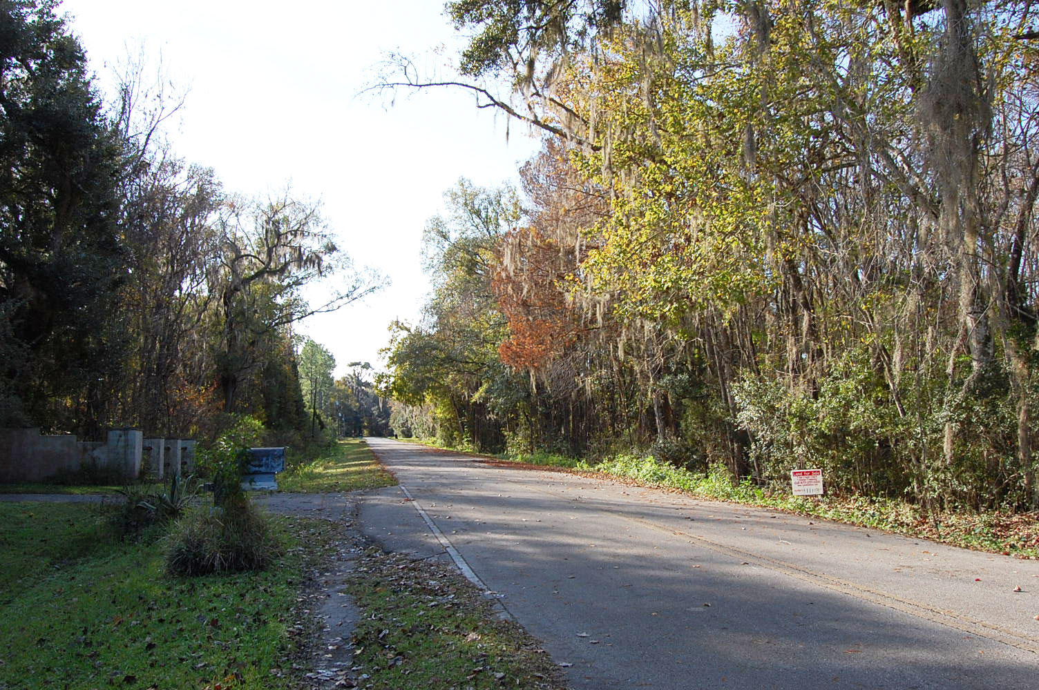 3 Acres in Sunshine State Steps From the Riverbank - Image 6