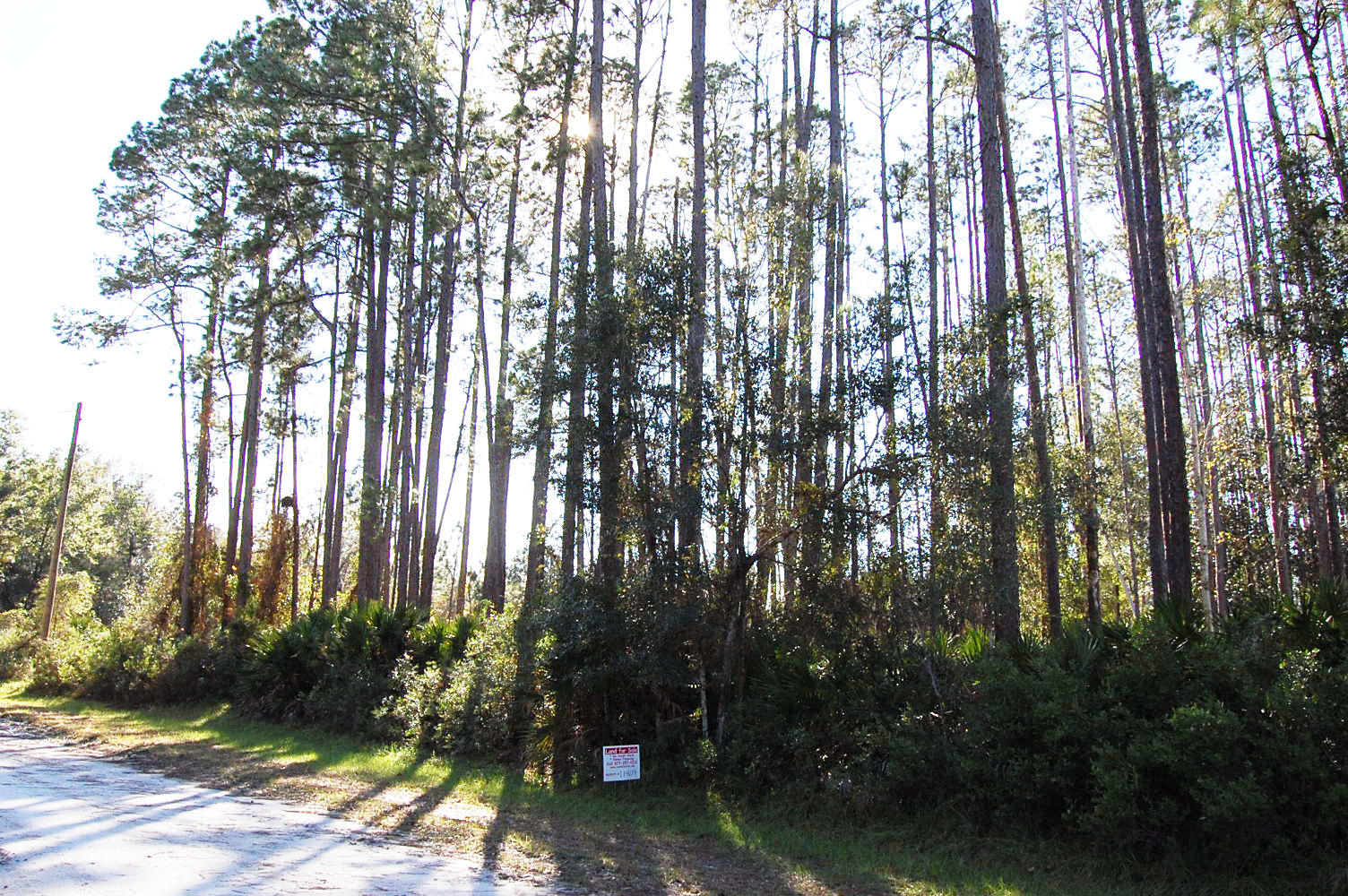 Over 1 Acre Near Many Lakes - Image 0