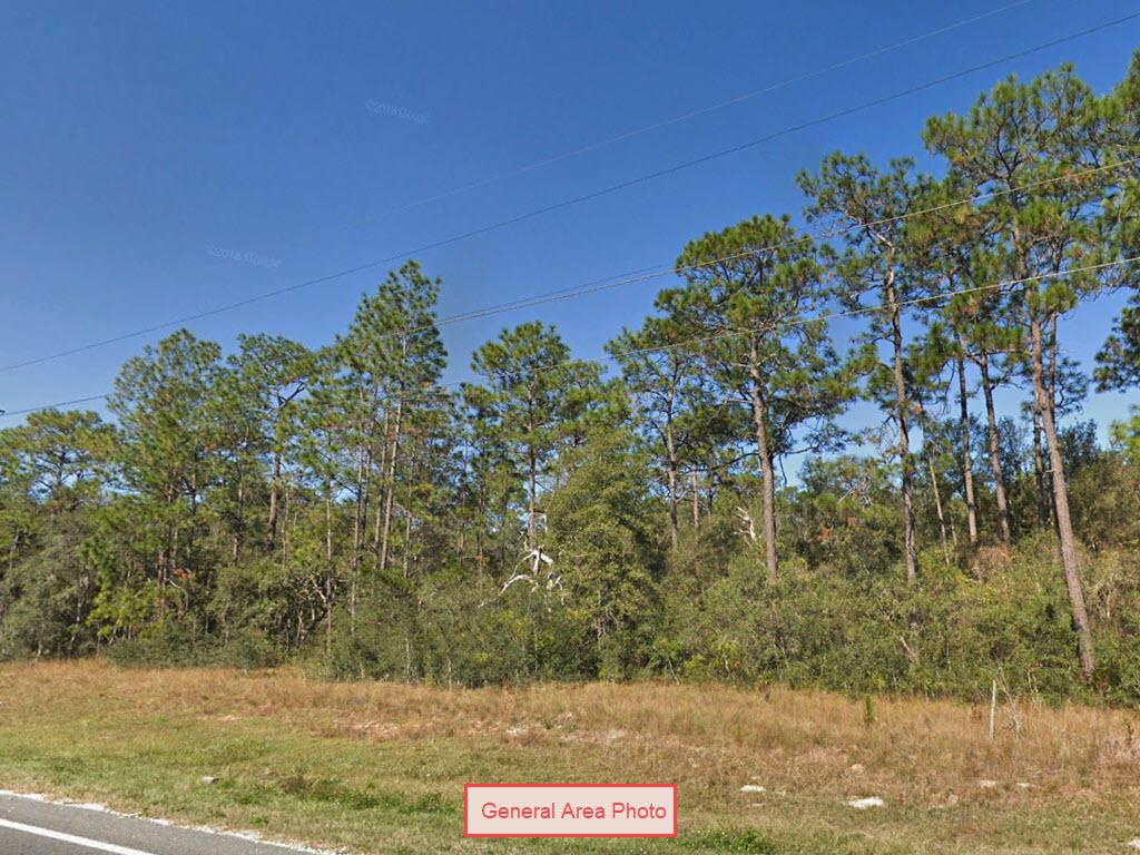 Nearly Quarter Acre Lot In Interlachen - Image 1