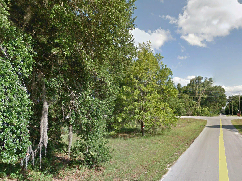 Near Quarter Acre in the Sunshine State - Image 1
