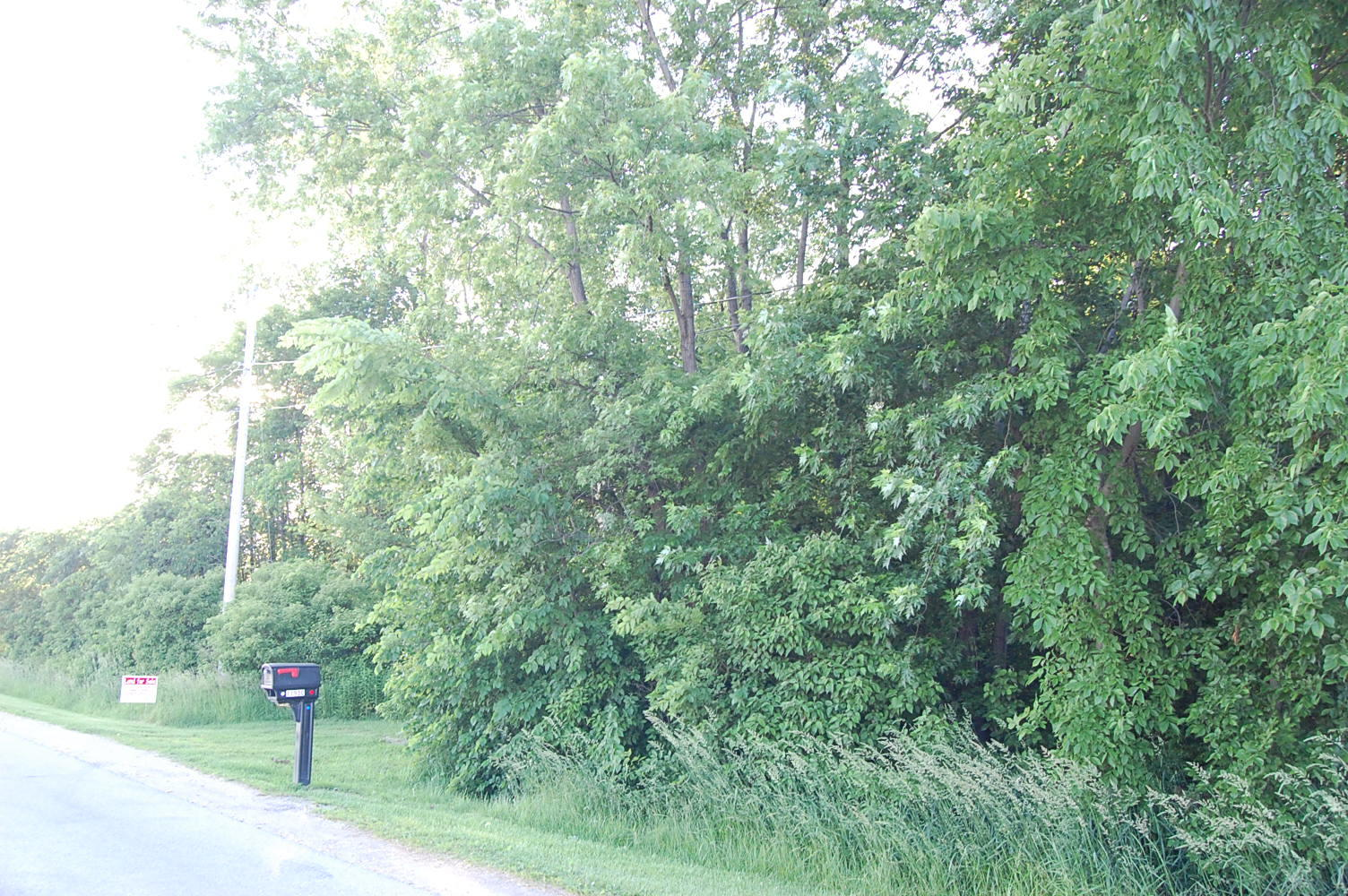 Perfect 1 Acre Parcel Just a Half Mile From Lake Erie - Image 0