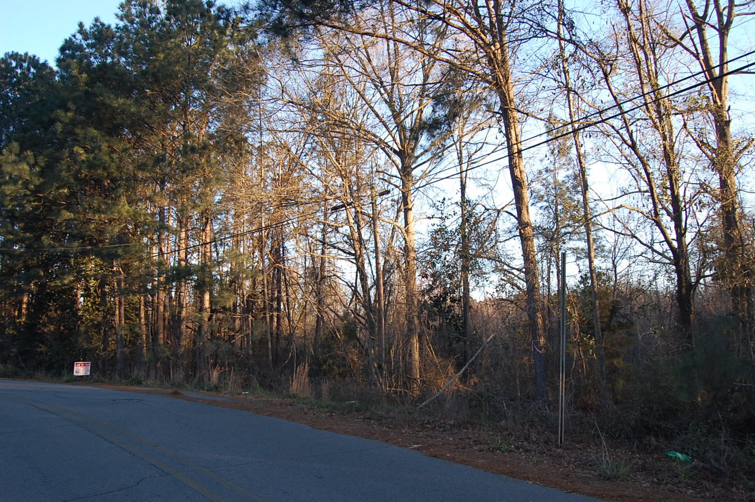 Near Full Acre of Creekside Property - Image 1