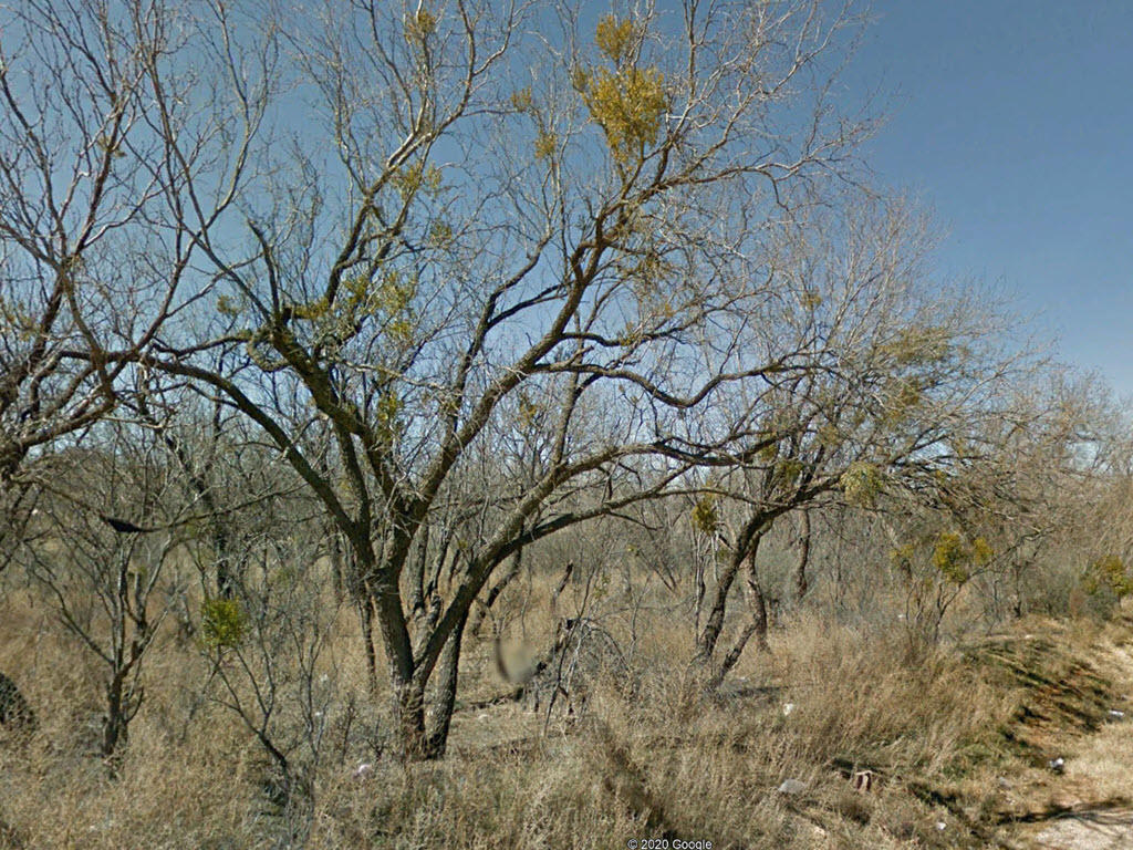 Rare Three Lots Sold as One in Sweetwater Texas - Image 0
