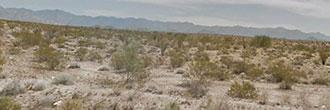 Amazing Desert Getaway in Glorious Arizona Desert