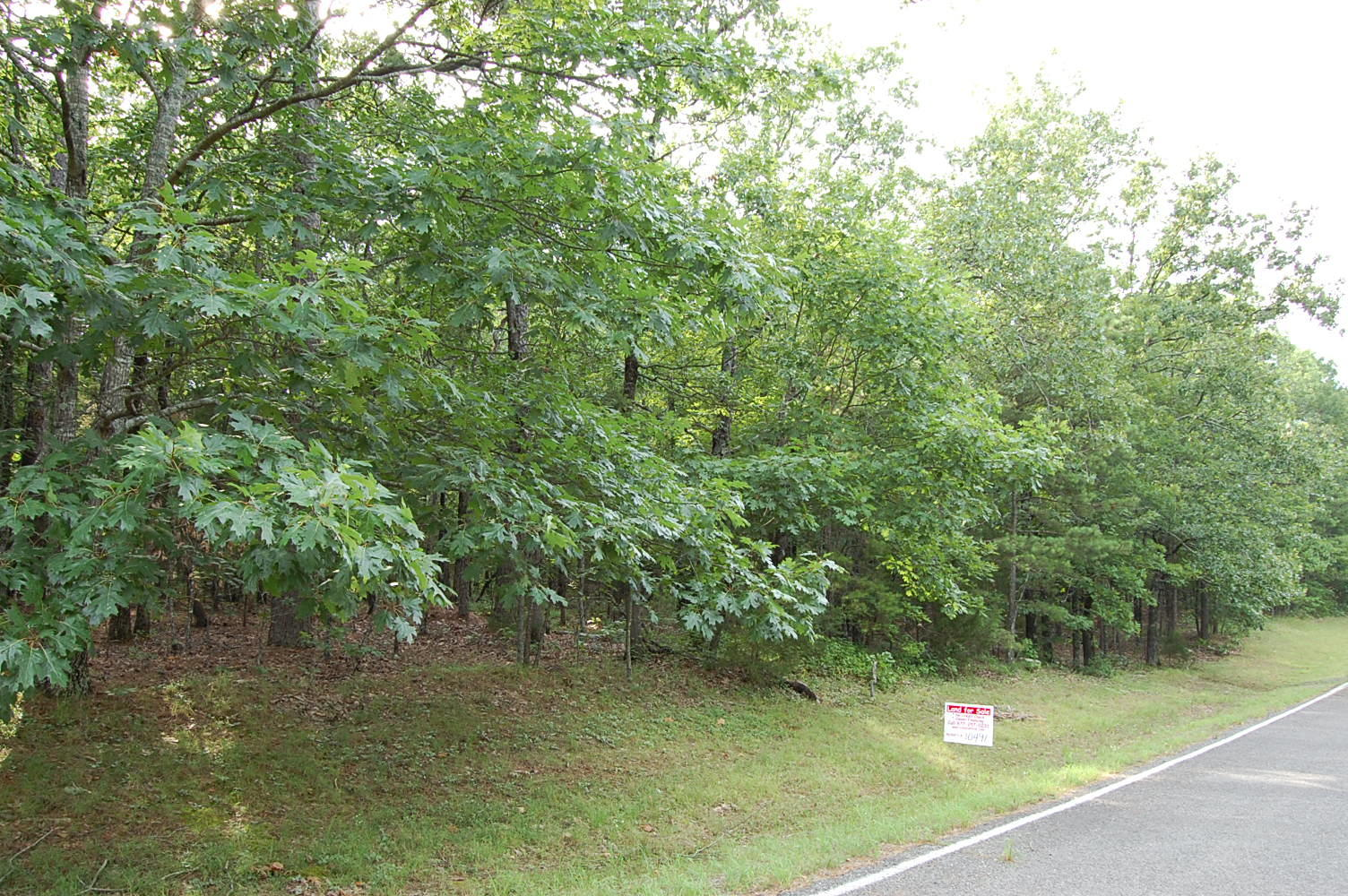 Beautiful Residential Lot in Arkansas Outdoor Lover's Paradise - Image 0
