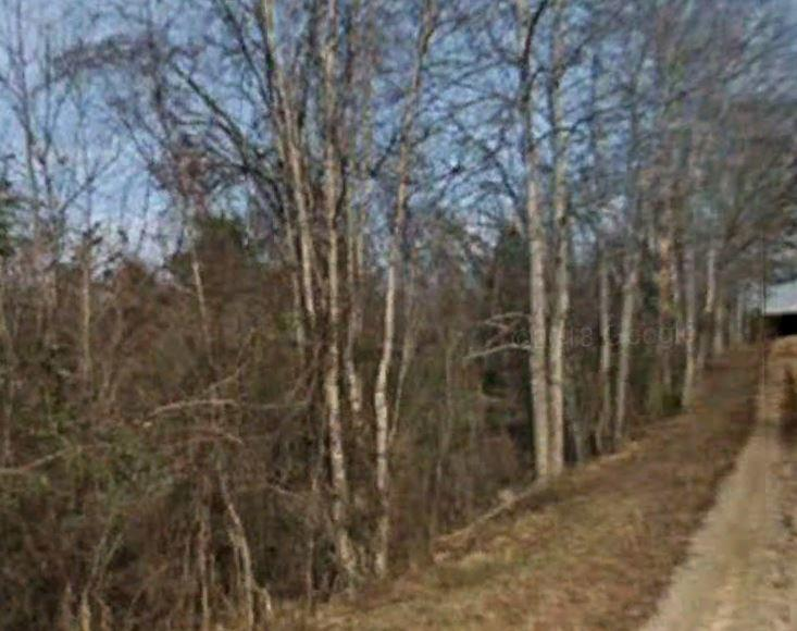 Near Half Acre in Beautiful Bluegrass State - Image 1