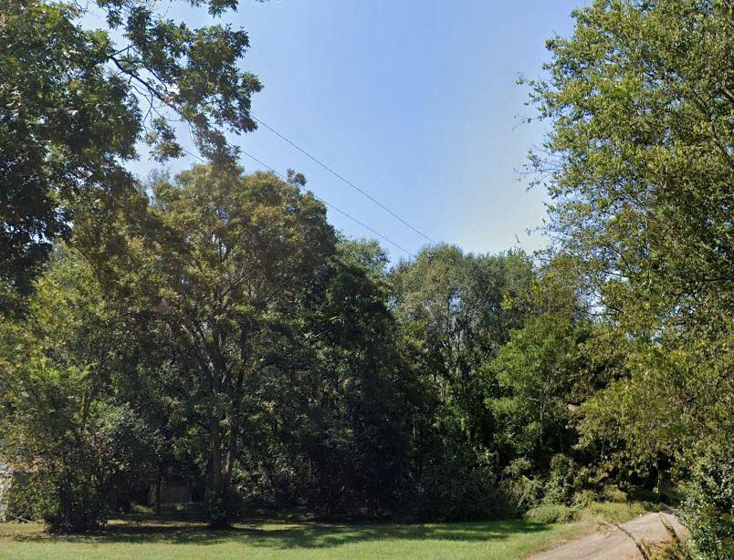 Undeveloped Residential Lot in Albany - Image 1