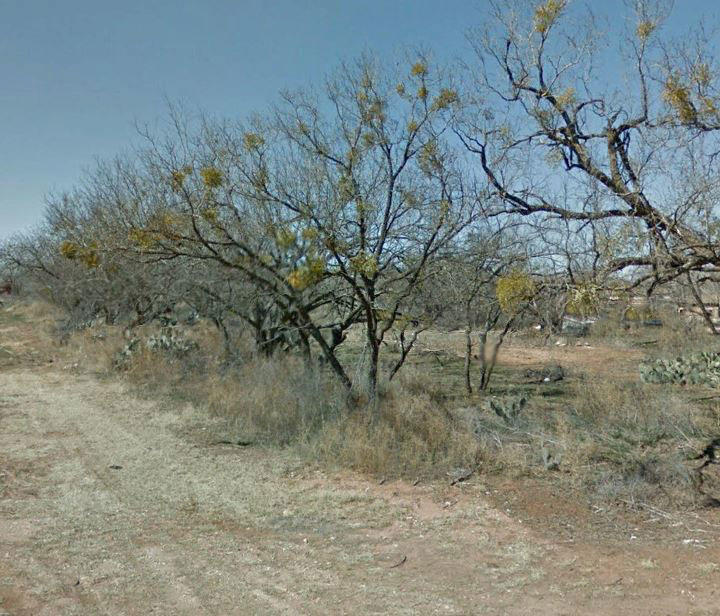 Pair of Central Texas City Lots - Image 1