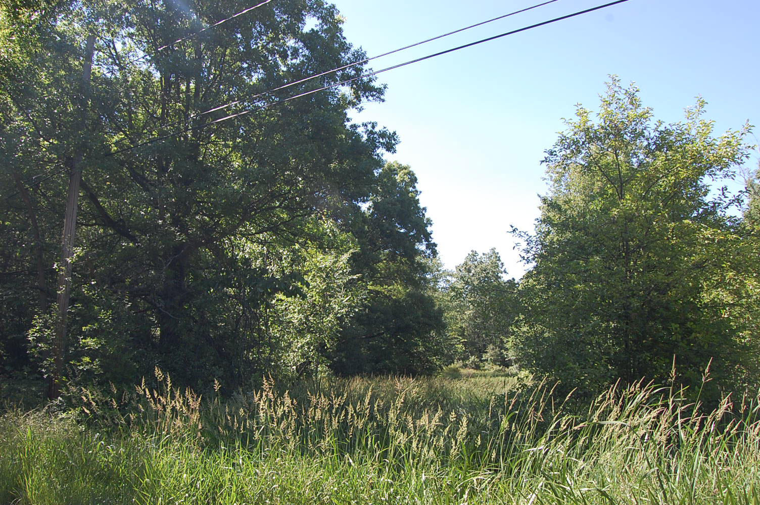 Lovely Ohio Lot Near Crystal Lake - Image 0