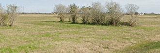 One Acre Getaway in Great Texas Community