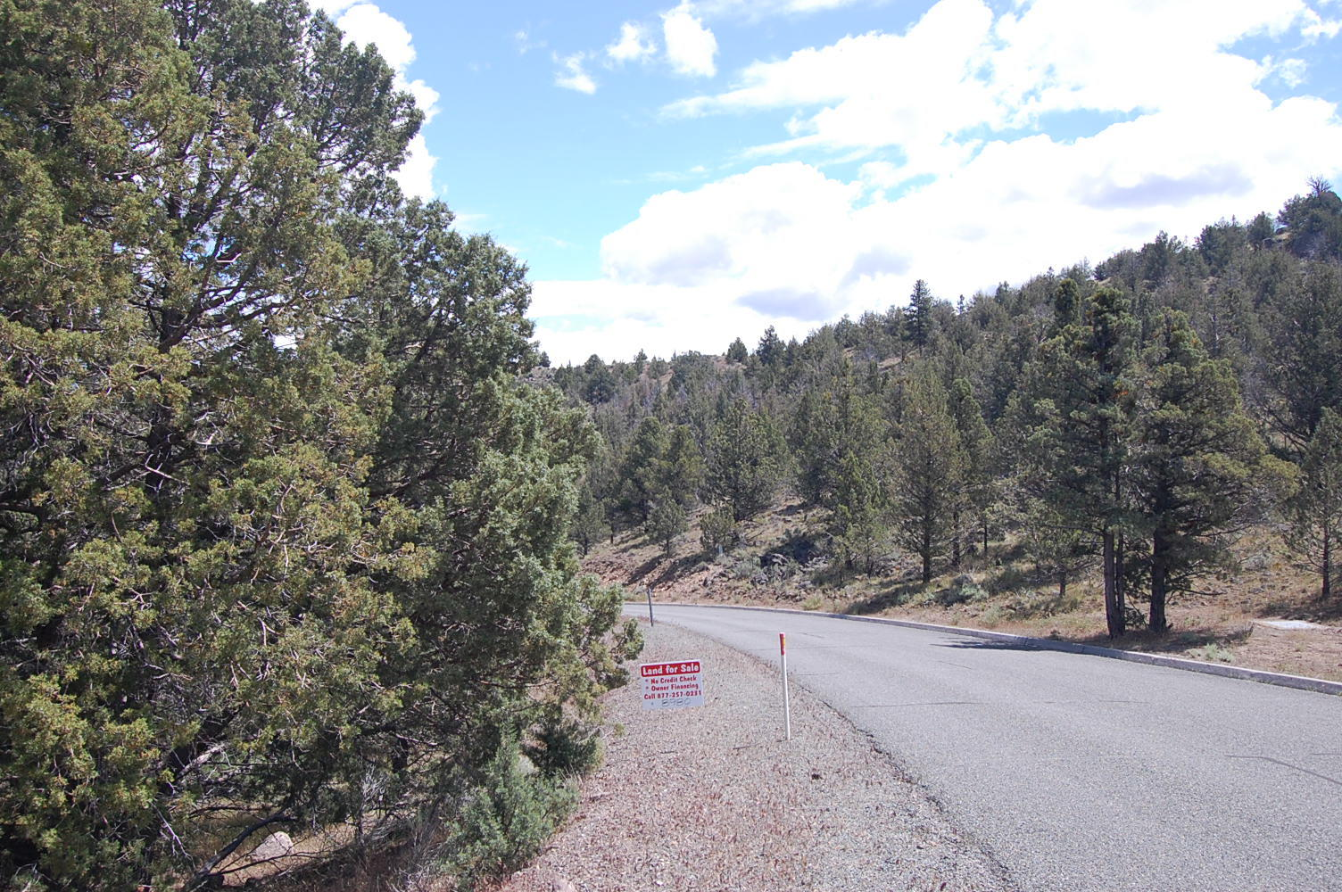 Gently Sloped Lot Near Weed California - Image 5