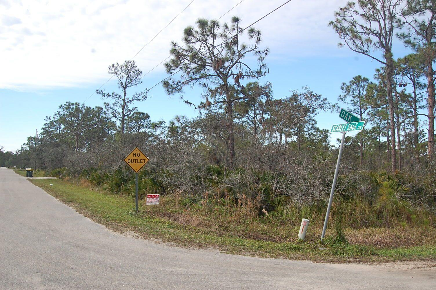 Quarter of an Acre Florida Land Near Lakes - Image 0