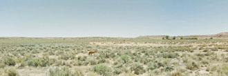 Picturesque Arizona Acreage in Spacious Desert Location