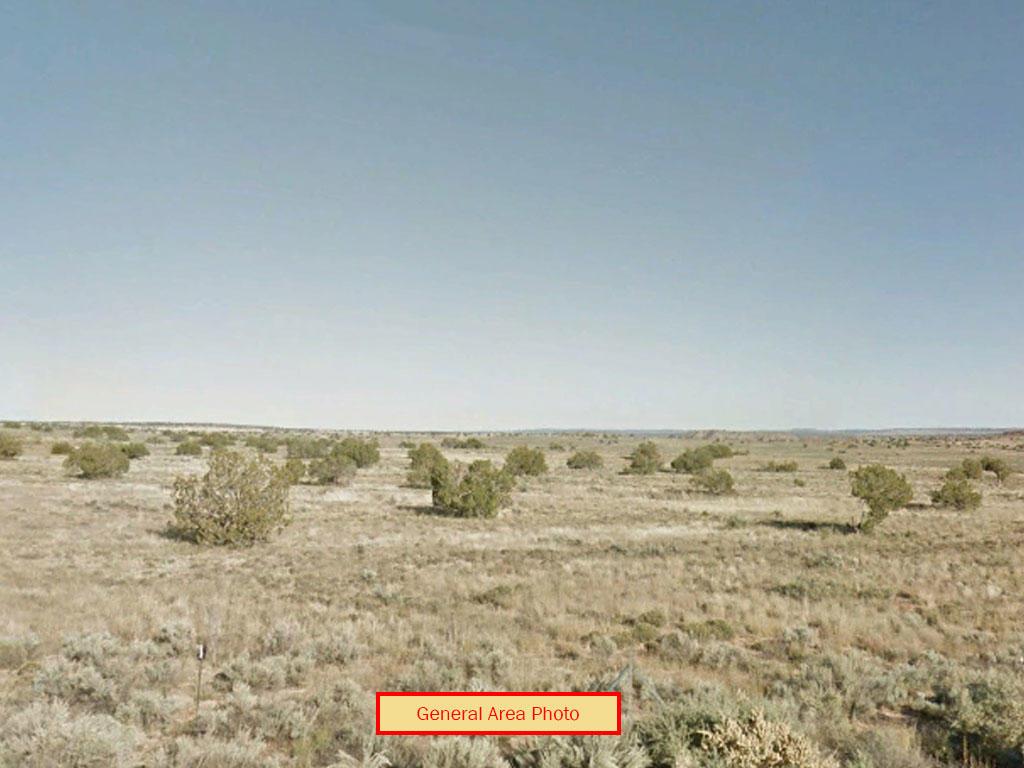 Arizona 6 Acre Multiple Lot Discount Offer - Image 0