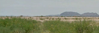 Attractive Flat Desert Residential Arizona Lot