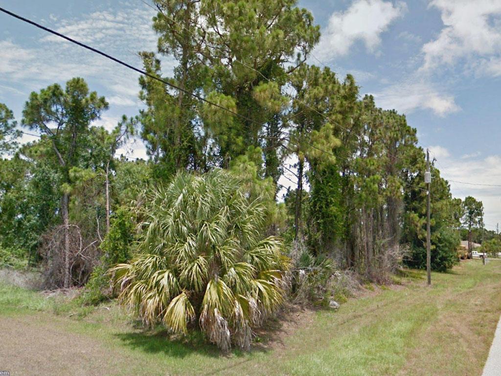 Luxury Living in Near Cape Haze Florida - Image 3