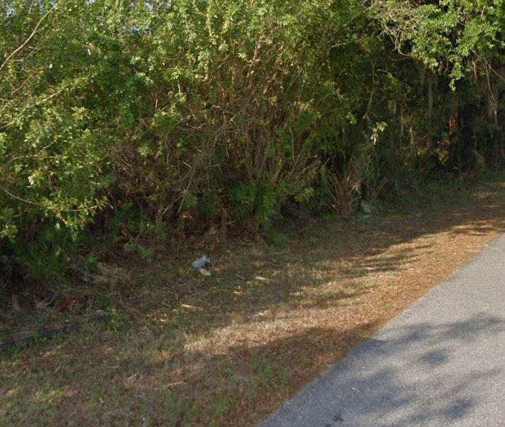 Florida Coastal Living in Bustling City - Image 5
