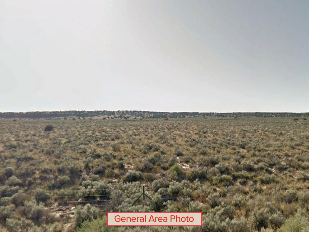 Double Acre Lots Being Sold As One - Image 1