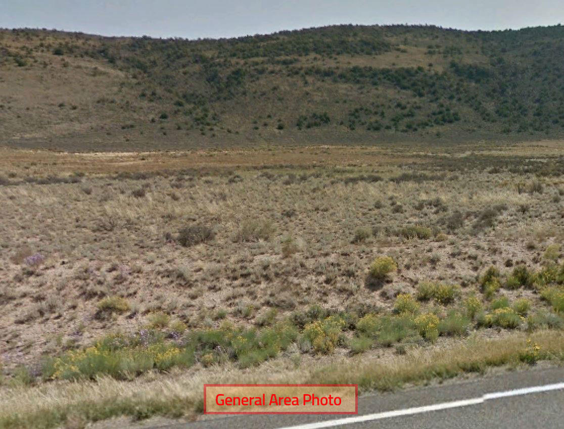 Twenty Acre Property Only 20 Minutes from San Luis - Image 1