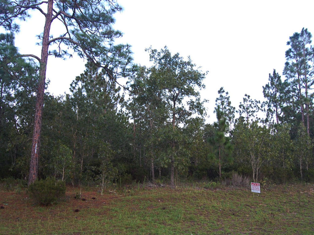 Interlachen City Waterfront Lot - Image 4