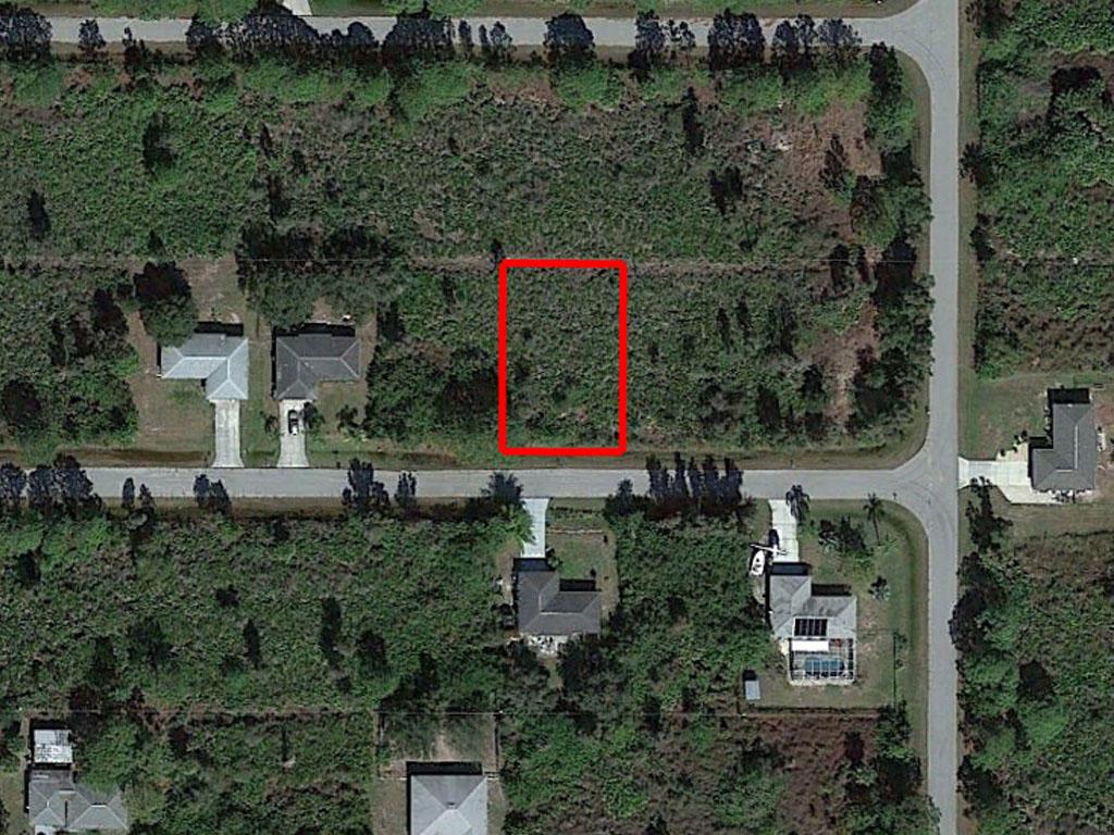 Usable Land Near Florida Coast - Image 2