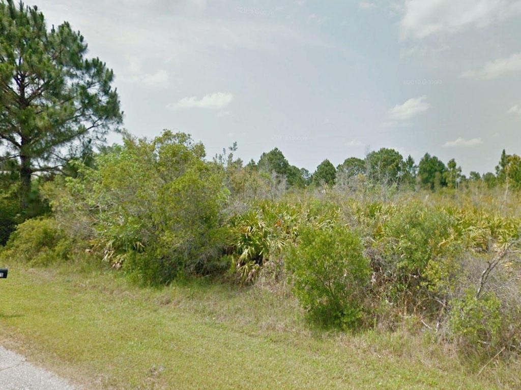 Usable Land Near Florida Coast - Image 4