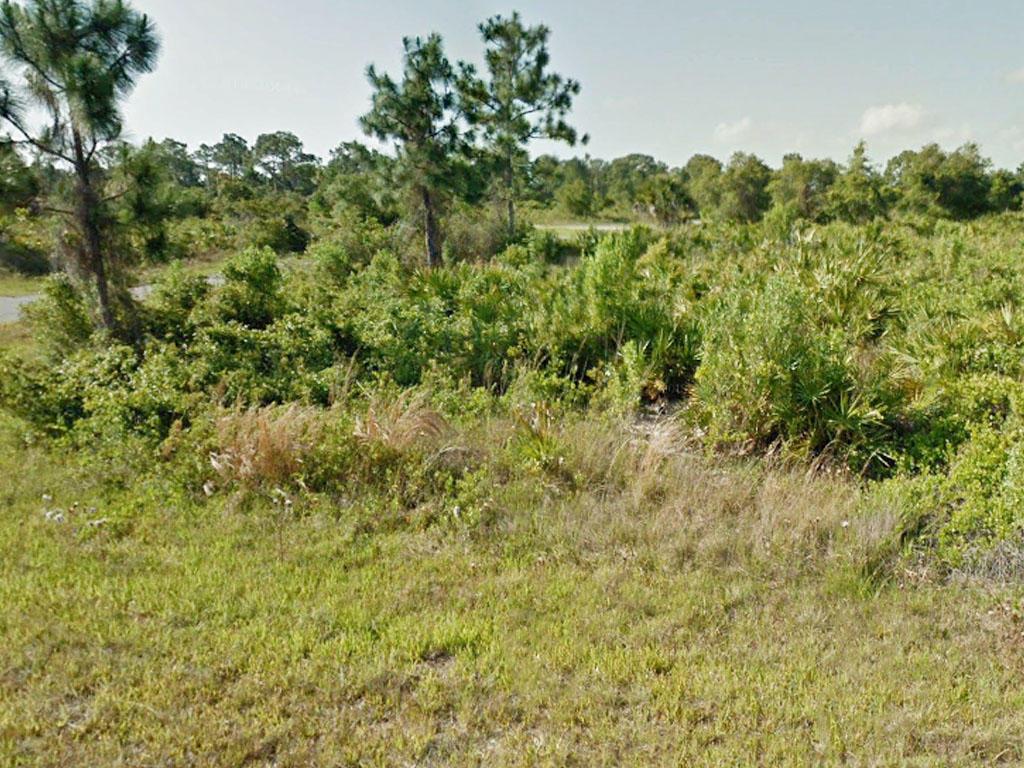 Beautiful Corner Lot Near Florida River - Image 4
