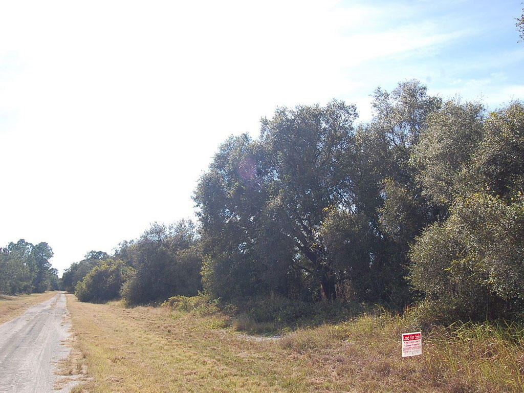 Florida Property in Up and Coming Area - Image 0