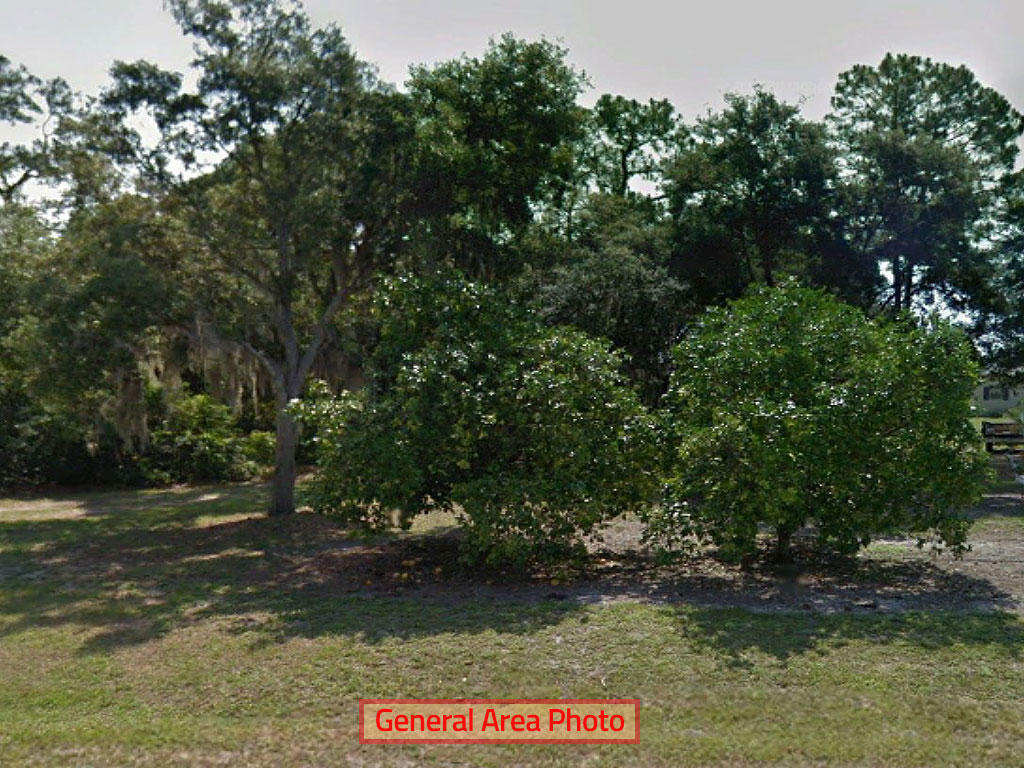 Rare 1 Acre in Orange Blossom Estates - Image 0