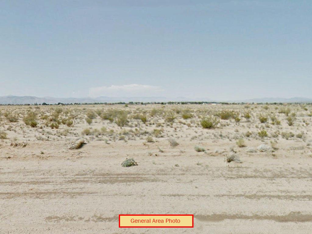 California Living on Quarter Acre Desert Land - Image 4