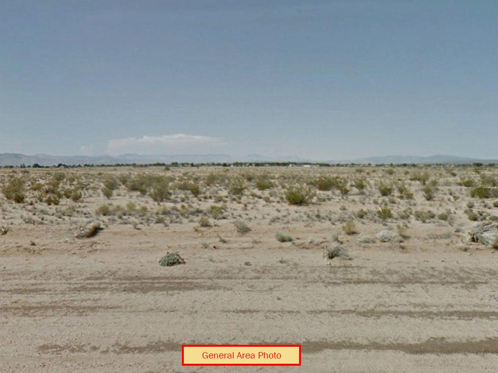 California Living on Quarter Acre Desert Land - Image 1