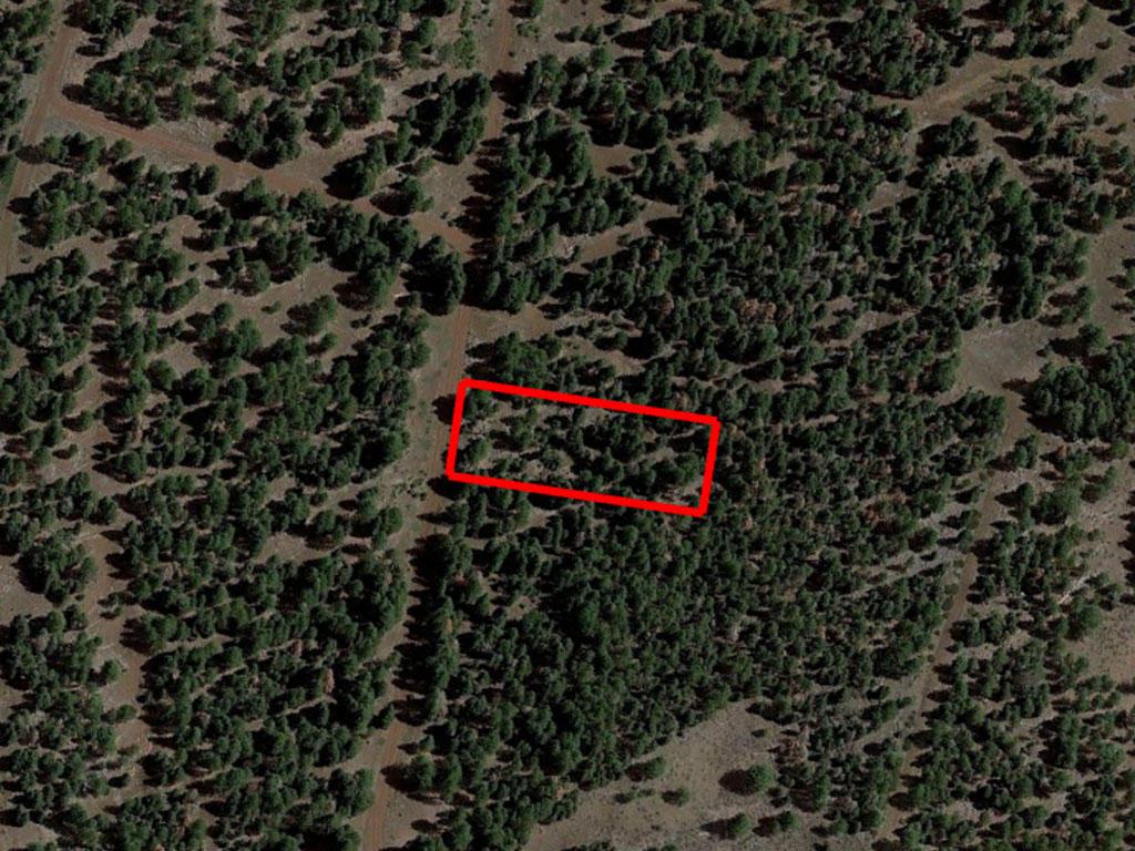 Private Acreage in California Pines - Image 1
