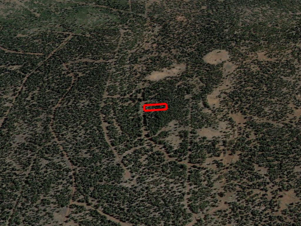 Private Acreage in California Pines - Image 2