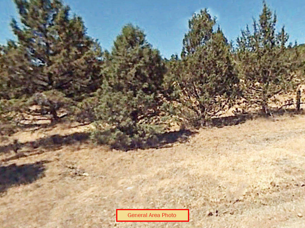 1.49-Acre Property Less than 7 Miles North of Alturas - Image 4