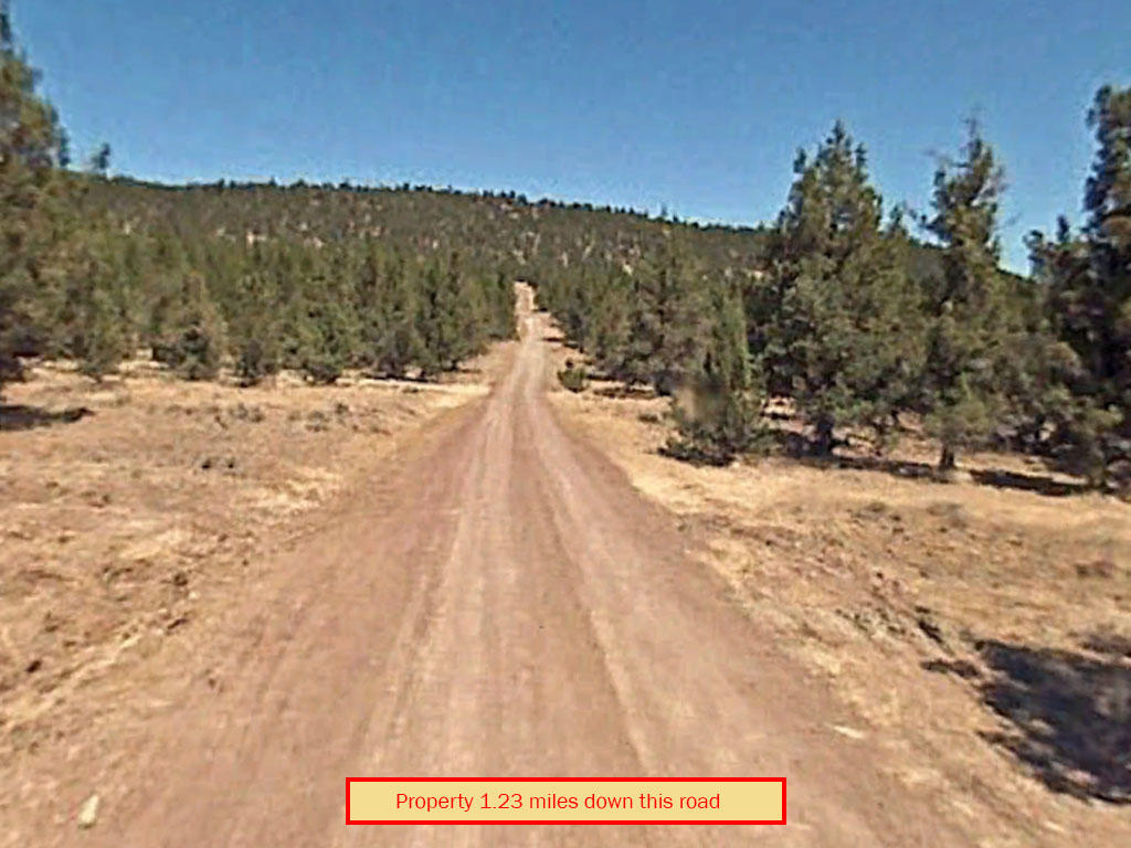 1.49-Acre Property Less than 7 Miles North of Alturas - Image 5