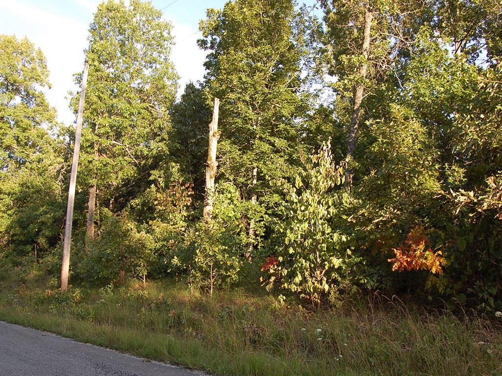 Northern Arkansas Parcel in Cherokee Village - Image 0