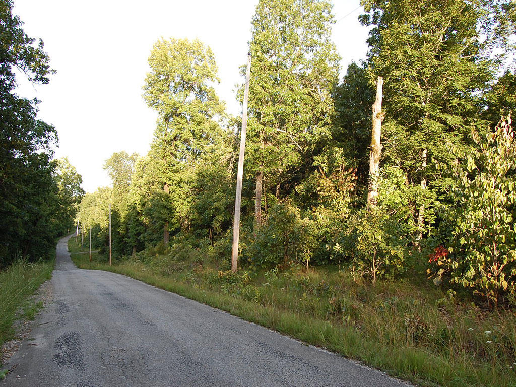Northern Arkansas Parcel in Cherokee Village - Image 5