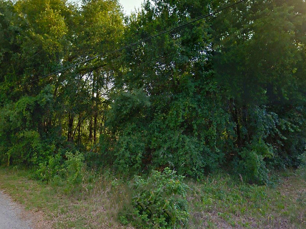 Nice Treed Lot Located in Developed Community - Image 4