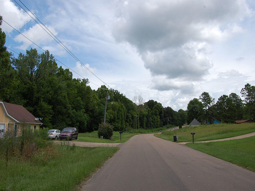 Gorgeous Residential Lot in Jackson Mississippi - Image 3