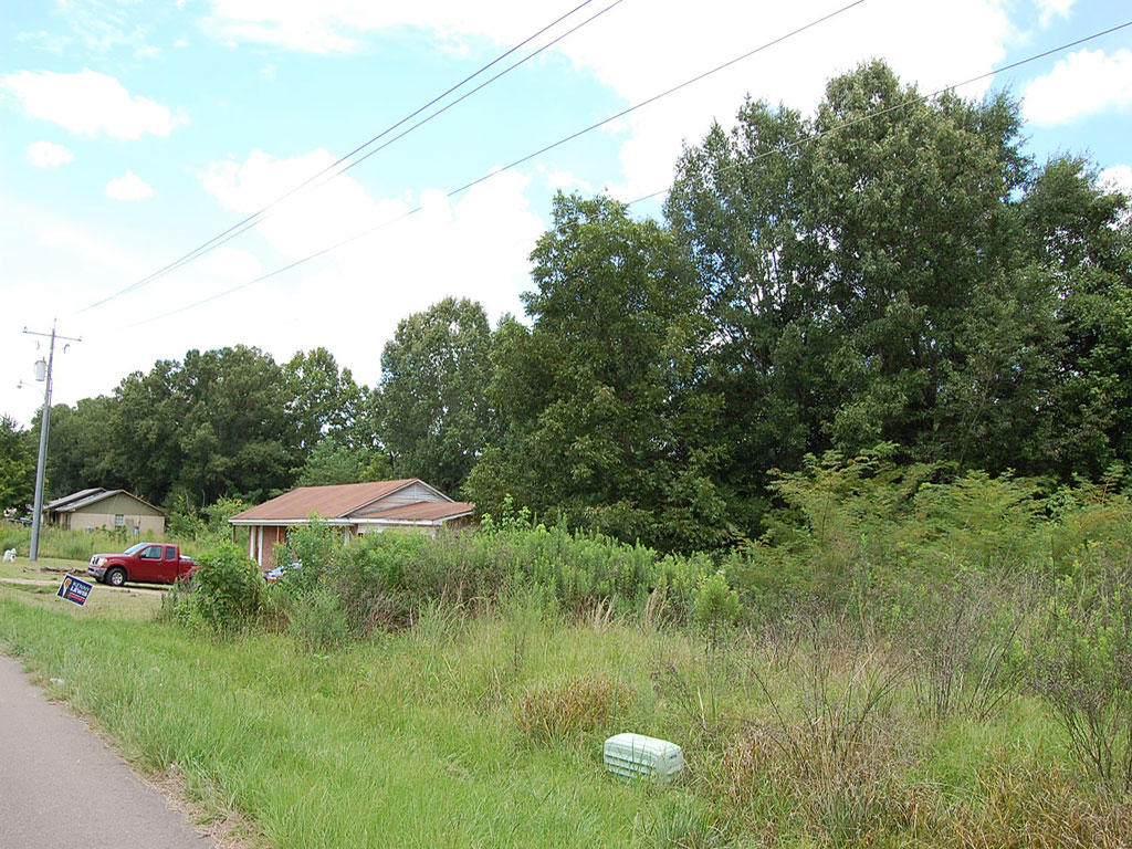 Gorgeous Residential Lot in Jackson Mississippi - Image 4