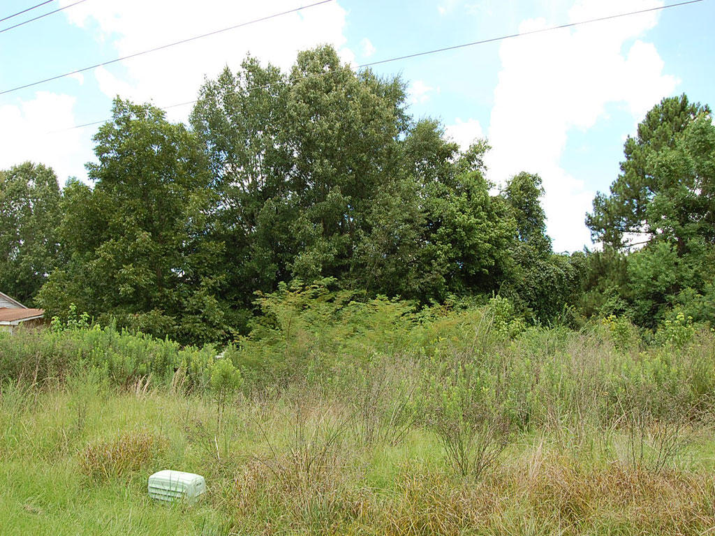 Gorgeous Residential Lot in Jackson Mississippi - Image 1