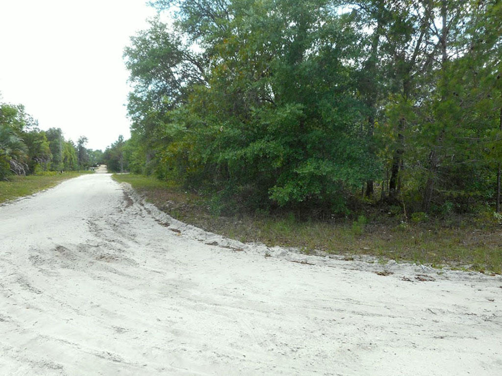Good Sized Rural Corner Lot - Image 2
