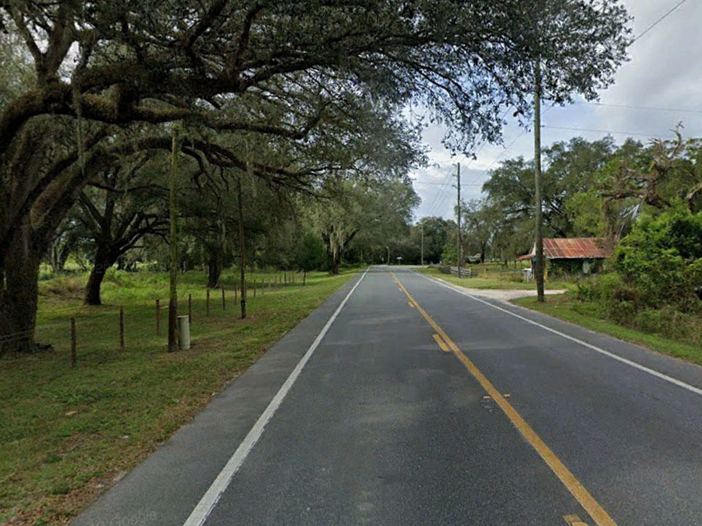 Spacious Fertile Land in the Sunshine State - Image 5