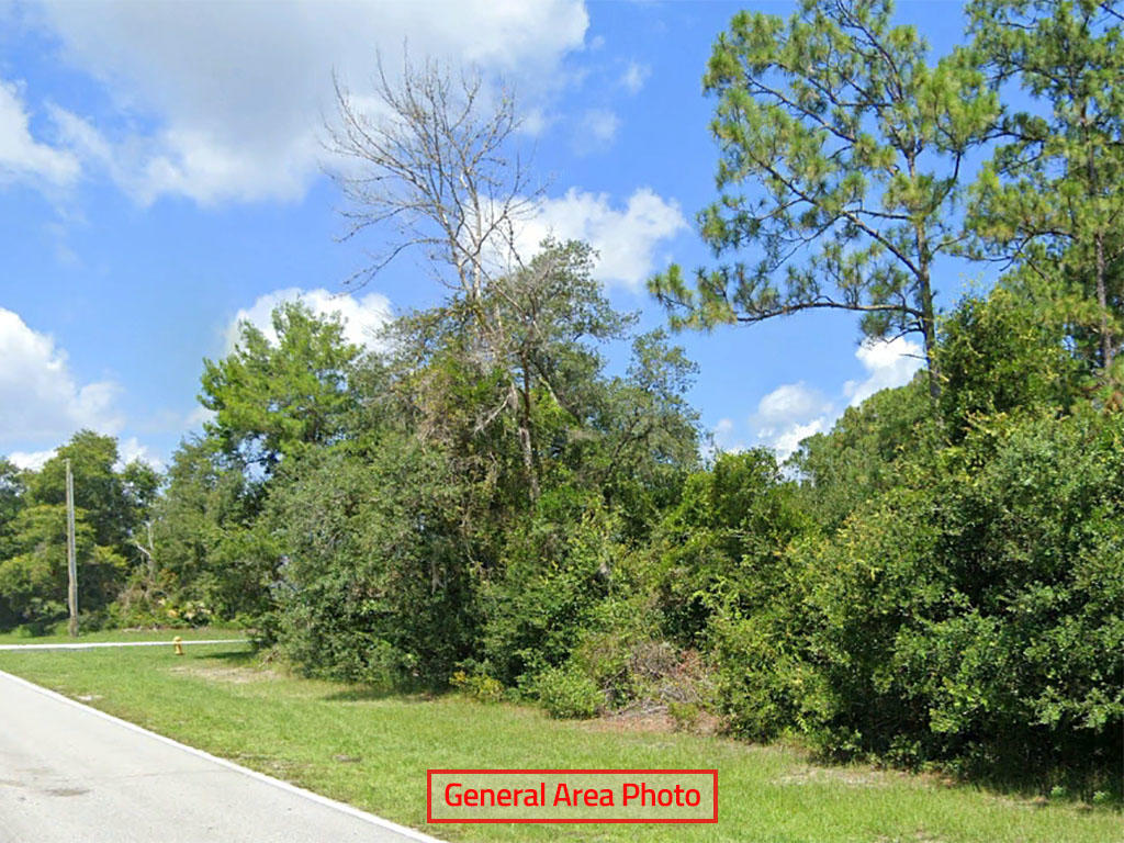 Residential Deltona Lot on Cul de Sac - Image 1