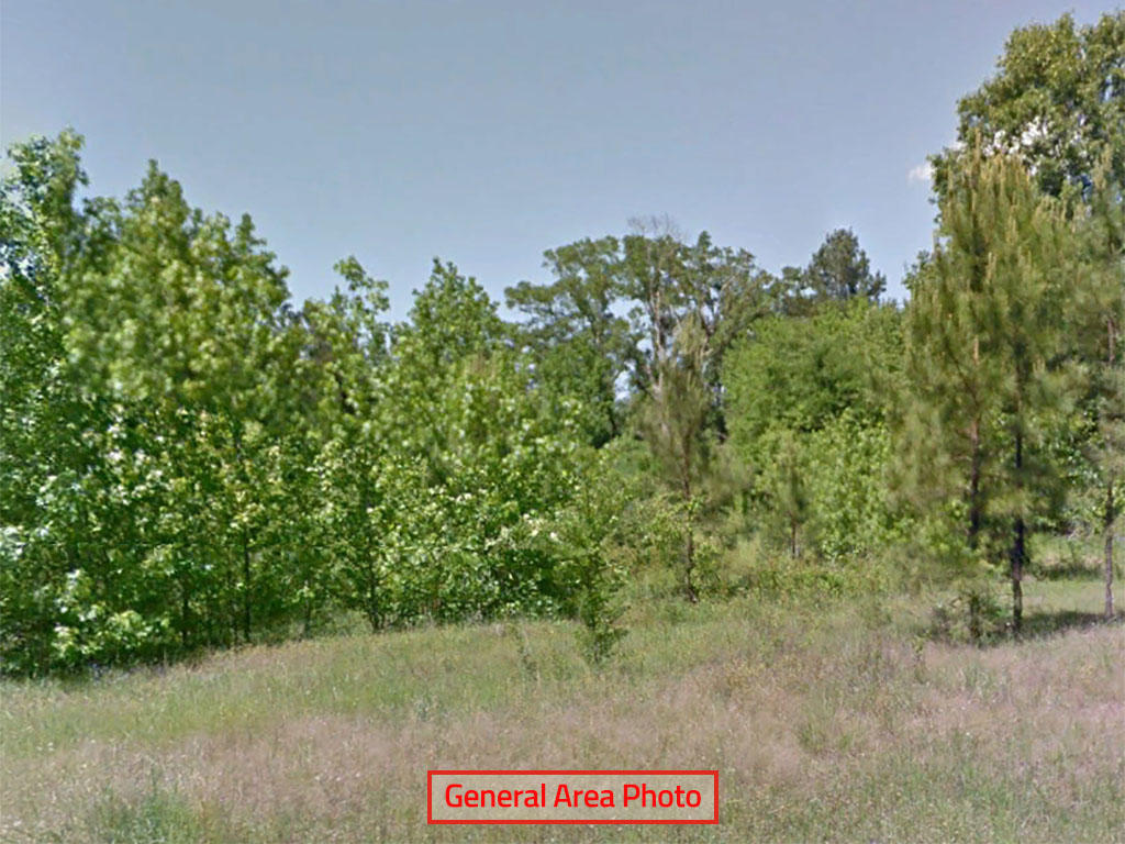 Amazing 13 Lots Sold as 1 in the Lone Star State - Image 0