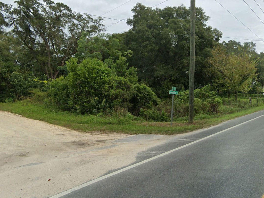 Spacious Fertile Land in the Sunshine State - Image 1