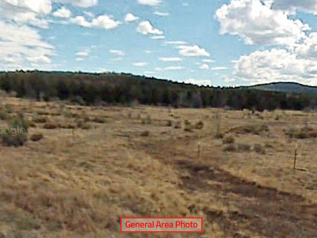 Escape to Northern California on this One Acre Lot - Image 3