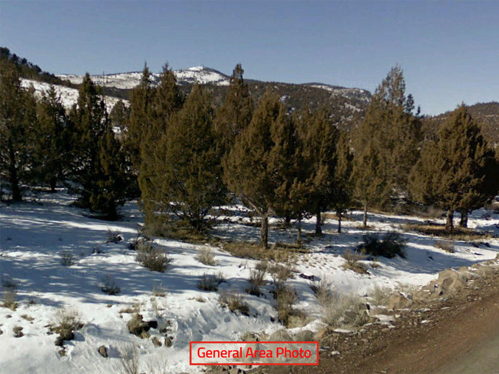 Escape to Northern California on this One Acre Lot - Image 0